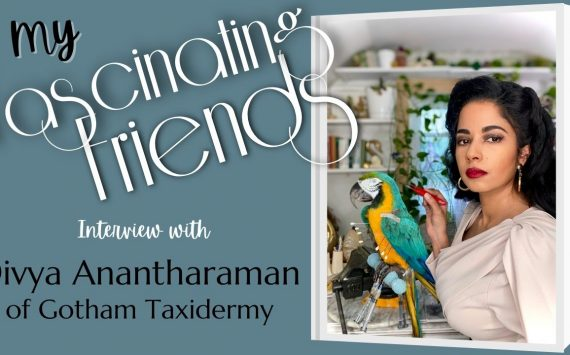 Fascinating Friends Series – Divya of Gotham Taxidermy